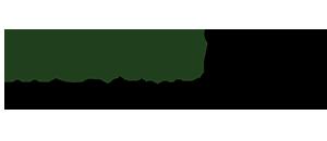 Logo-money-talk-v2