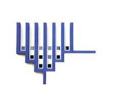 Menorah_for_logo