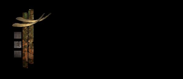 Shp-logo_fnl_060612-rgb